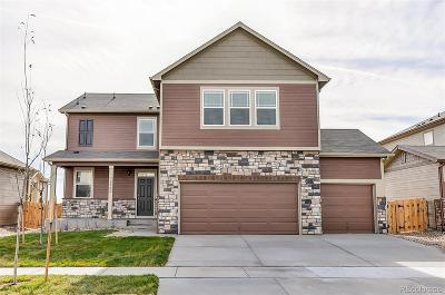 Castle Rock Single Family Home Active: 6031 Point Rider Circle