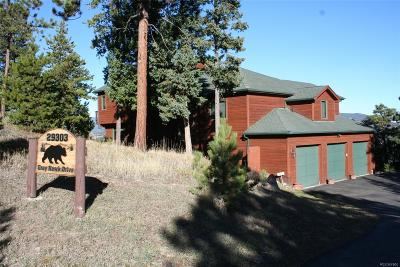 Evergreen, Conifer, Bailey, Morrison, Golden, Indian Hills Single Family Home Sold: 29303 Grayhawk Drive