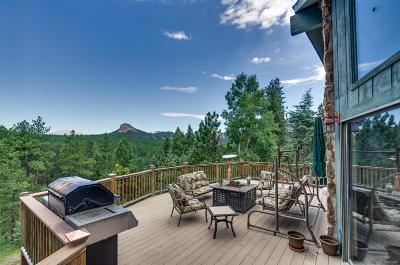 Pine Single Family Home Under Contract: 45 South Jones Creek Lane