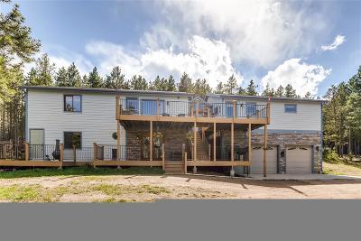 Conifer Single Family Home Under Contract: 9059 Krashin Drive