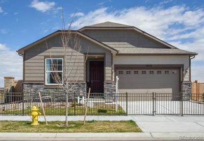 Thornton Single Family Home Active: 9640 Clermont Lane