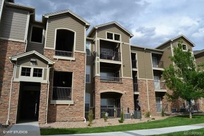 Erie Condo/Townhouse Under Contract: 3100 Blue Sky Circle #308
