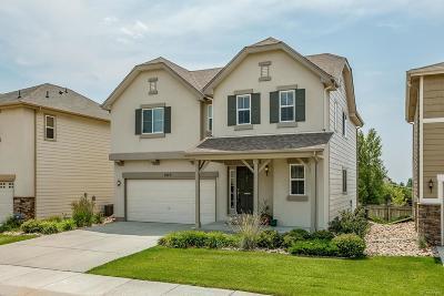 Monument Single Family Home Active: 1423 Yellow Granite Way
