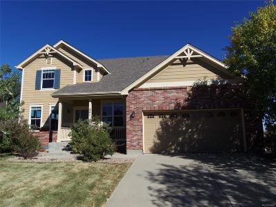 Aurora Single Family Home Active: 541 North Flat Rock Circle