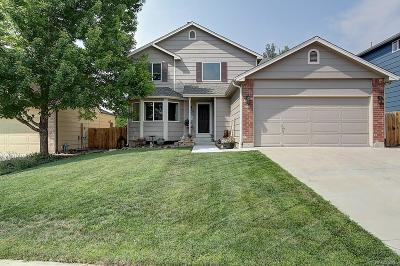 Parker Single Family Home Active: 23225 Blackwolf Way