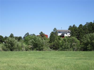 Elbert County Single Family Home Under Contract: 26904 County Road 13