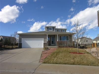 Littleton Single Family Home Under Contract: 9619 Lone Iris Place