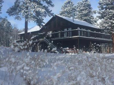 Park County Single Family Home Under Contract: 732 Bluebird Lane