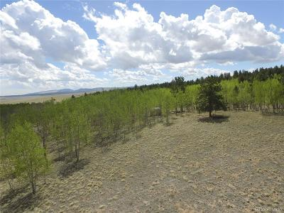 Hartsel CO Residential Lots & Land Active: $44,000