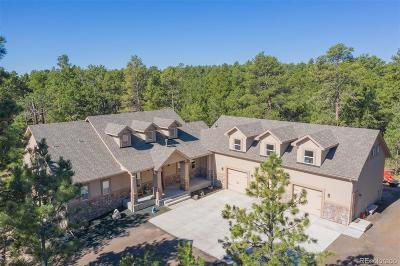 Elbert CO Single Family Home Active: $975,000