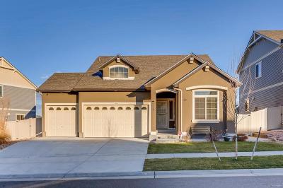 Denver Single Family Home Active: 4480 Uravan Street