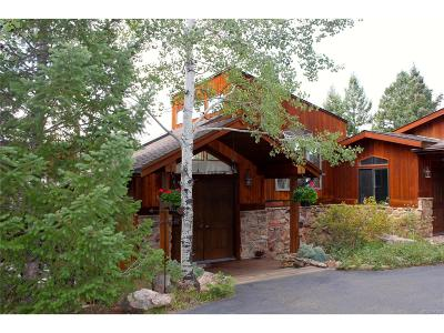 Conifer Single Family Home Under Contract: 9398 Fallen Rock Road