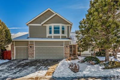 Littleton Single Family Home Under Contract: 6180 South Vivian Street