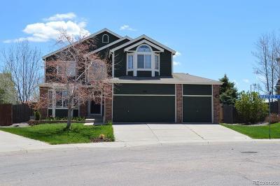 Castle Rock Single Family Home Active: 448 Benton Street