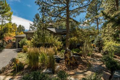 Castle Rock Single Family Home Active: 809 Moffat Court