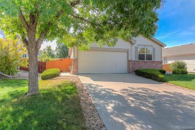 Aurora CO Single Family Home Active: $324,900