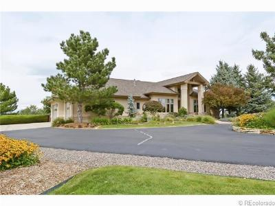 Castle Rock CO Single Family Home Sold: $865,000