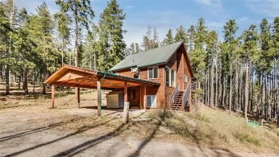 Evergreen Single Family Home Under Contract: 133 Ute Trail