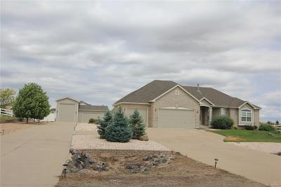 Hudson Single Family Home Active: 16715 Shadow Wood Court