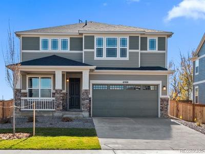 Thornton Single Family Home Active: 6980 East 121st Place
