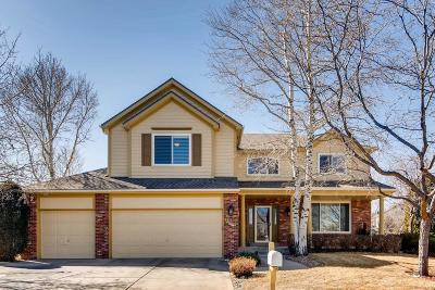 Adams County Single Family Home Active: 12477 Lipan Court