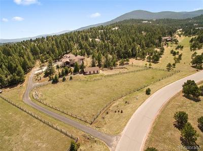 Golden, Lakewood, Arvada, Evergreen, Morrison Single Family Home Active: 32382 Meadow Mountain Road