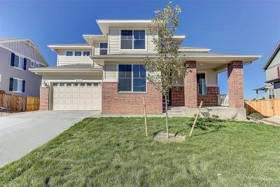 Castle Rock Single Family Home Active: 1431 Sidewinder Circle
