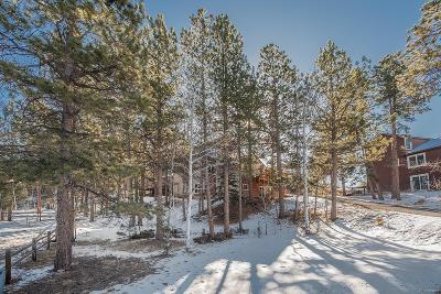 Woodland Park Single Family Home Under Contract: 2020 Valley View Drive