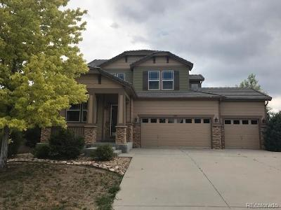 Castle Rock Single Family Home Under Contract: 645 Springvale Road