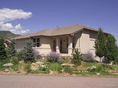 Single Family Home Active: 10447 Choke Cherry Court