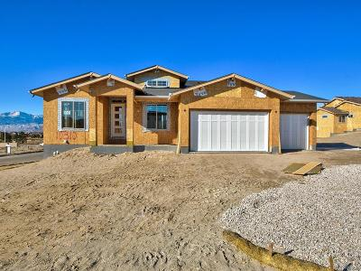 Colorado Springs Single Family Home Active: 10310 Stagecoach Park Court