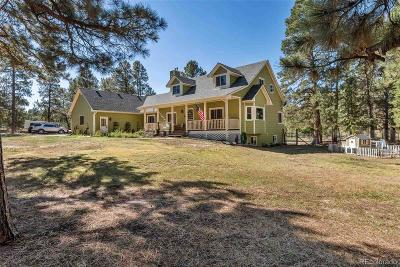 Elizabeth CO Single Family Home Active: $634,900