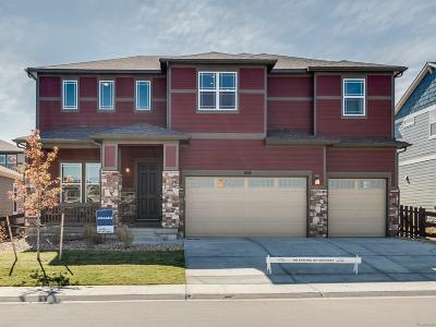 Lafayette Single Family Home Active: 668 Rockridge Drive