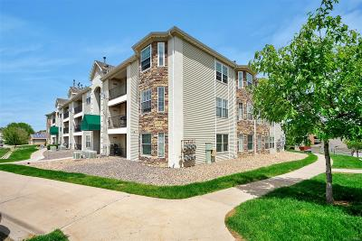 Jefferson County Condo/Townhouse Active: 12233 West Cross Drive #303