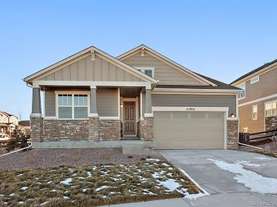 Aurora Single Family Home Active: 23990 East Minnow Drive
