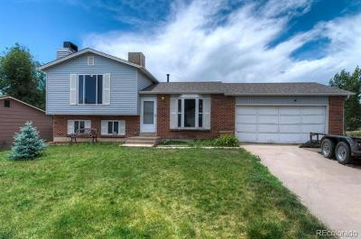 Thornton Single Family Home Active: 5428 East 111th Drive