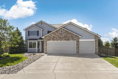 Castle Rock Single Family Home Active: 1366 Kingsfield Street