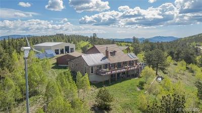 Clear Creek County Single Family Home Active: 275 Alpine Way