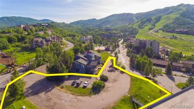Residential Lots & Land Active: 1724 Ski Time Square Drive