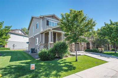 Fallbrook Farms Single Family Home Active: 3523 East 141st Place