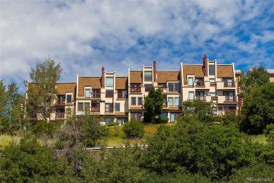 Steamboat Springs CO Condo/Townhouse Under Contract: $255,000