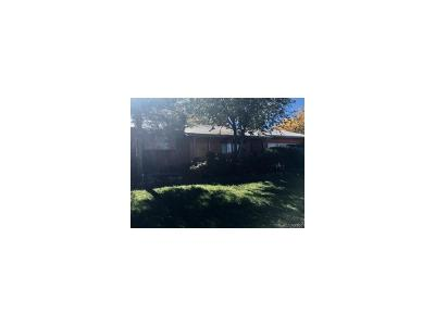 Denver Single Family Home Active: 440 Marigold Drive