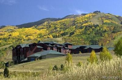 Steamboat Springs CO Condo/Townhouse Active: $51,900