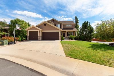 Castle Rock Single Family Home Active: 7390 Slate Court