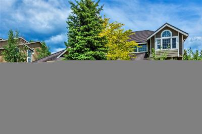 Littleton Single Family Home Under Contract: 40 Amaranth Drive