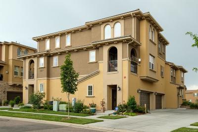 Tresana Condo/Townhouse Under Contract: 9487 Loggia Street #D