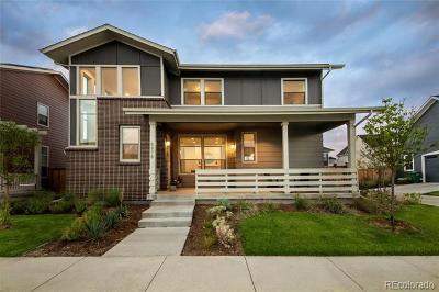 Denver Single Family Home Active: 5978 Chester Street