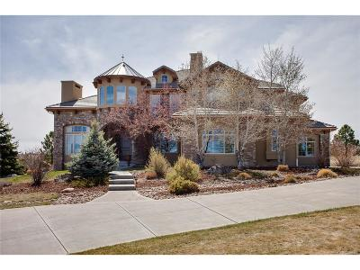 Spirit Ridge Single Family Home Under Contract: 9610 Sara Gulch Circle