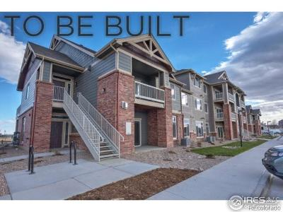 Longmont Condo/Townhouse Under Contract: 804 Summer Hawk Drive #203