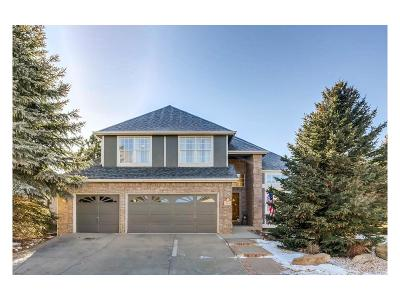Plum Creek Single Family Home Under Contract: 596 West Prestwick Way